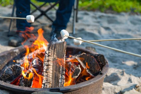 marshmallows over a fire pit