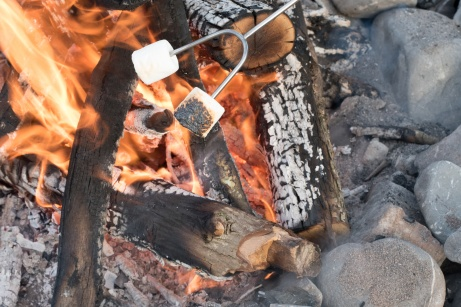 marshmallows roasting over a fire