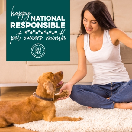 National Responsible Pet Owners Month