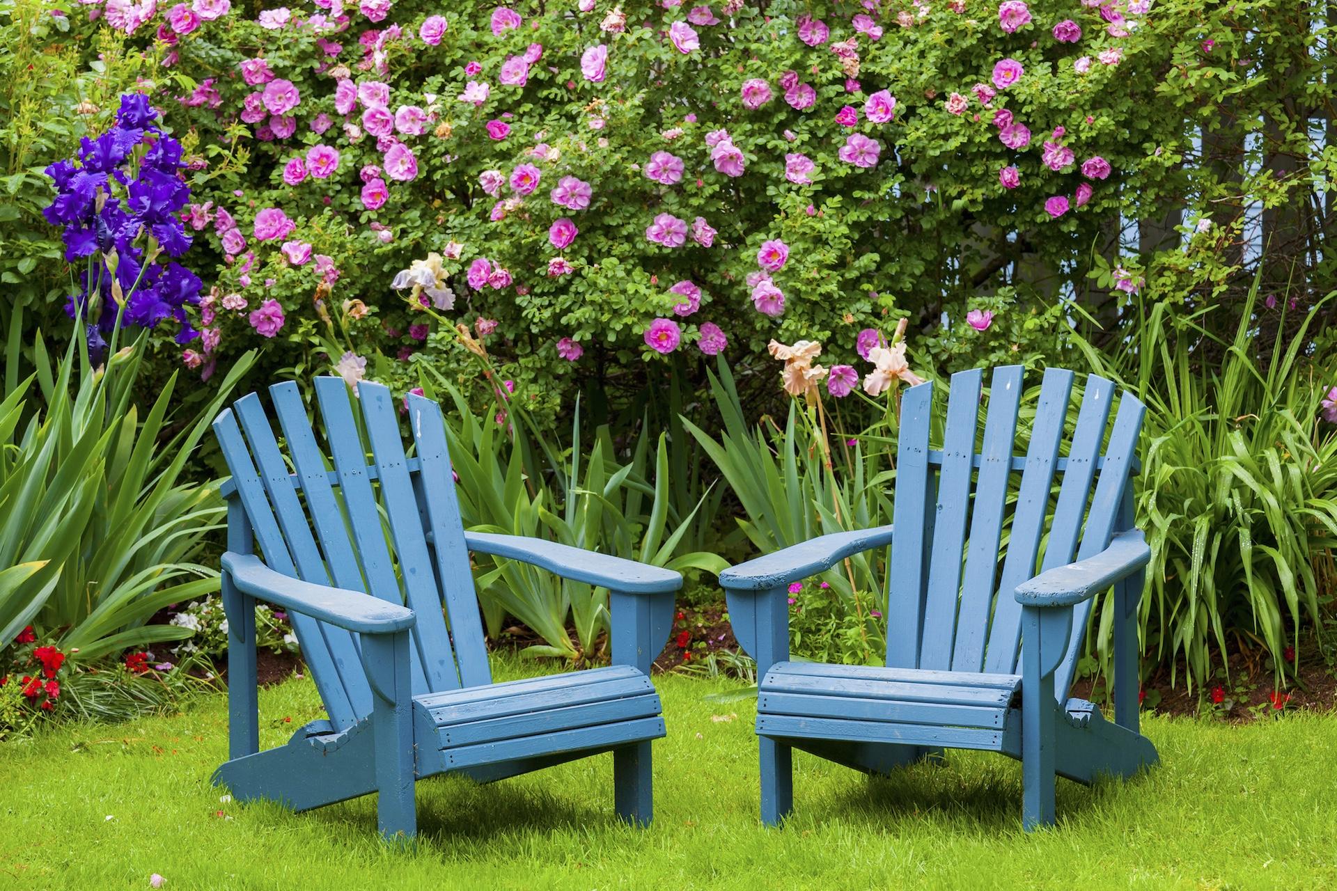 peaceful backyard tips